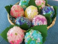 金平糖の 『 紫陽花 』 (アジサイ) 咲いています。