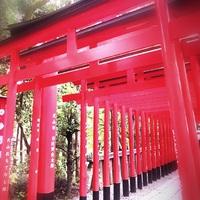 ~名古屋に行って来ました。その③犬山城&城下町巡り編~