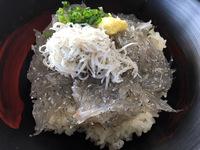 田子の浦漁協食堂さんで、富士山盛り!