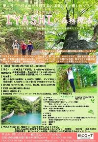 【募集中】3/17(土)~18(日) IYASHIの森林療法