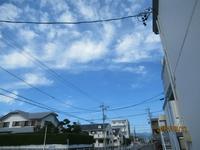 中田本町117-02リックポスティング配布 「2017年9月20日(水)」