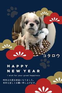 あけましておめでとうございます。本年もよろしくお願いいたします!