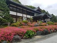 新緑の法多山での寺スタ朝ヨガ