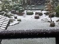 お彼岸に雪が降る