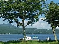 静かな湖畔の水の影から