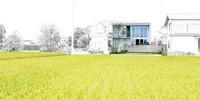 焼津市Iさんの家 施工例