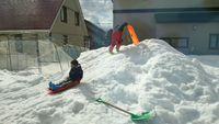 北海道で雪満喫中
