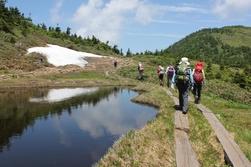 島田ハイキング:夏の会津駒ケ岳