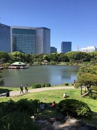 東京のオアシス『浜離宮庭園』