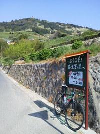 粟ヶ岳ヒルクライム71 Apr. 29, 2017 【朝練宣言!】